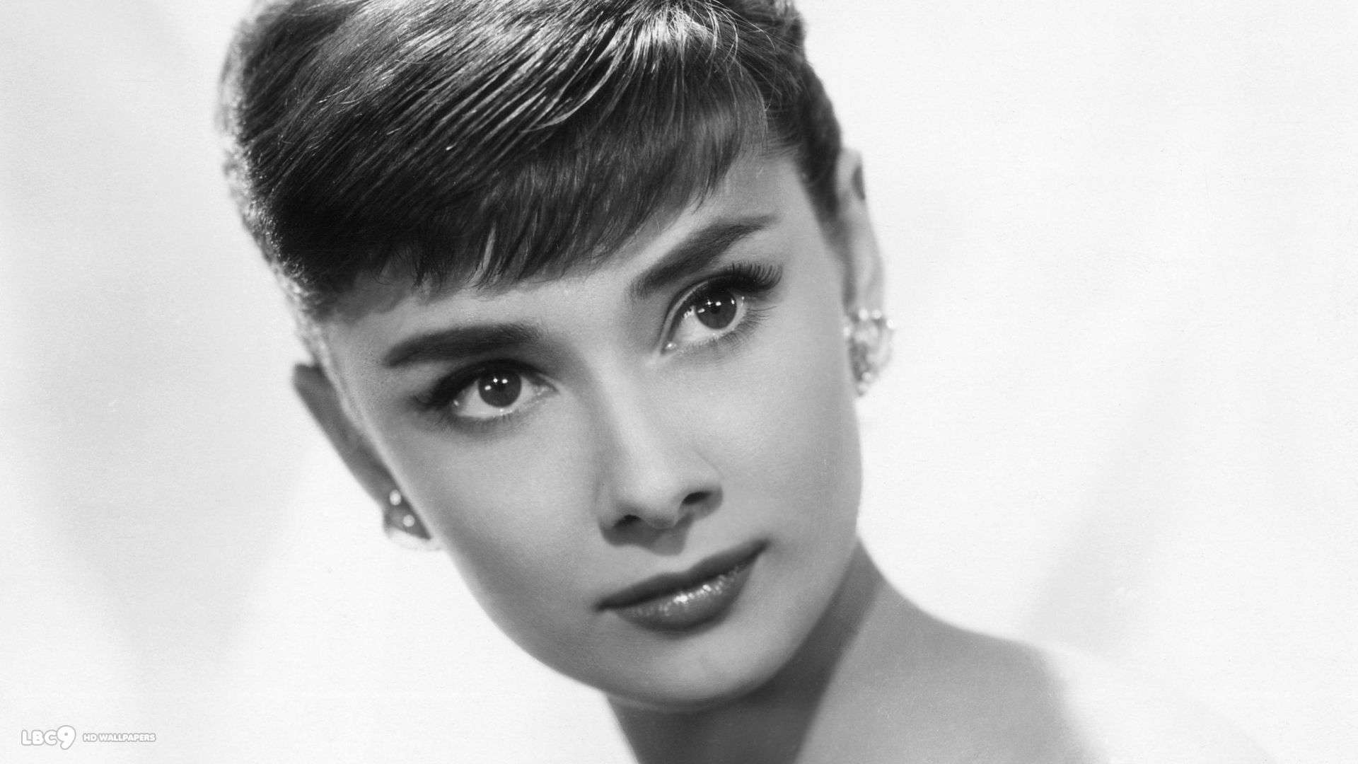 audrey hepburn portrait everything audrey 84 everything audrey hepburn