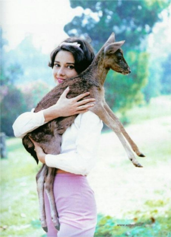 Audrey Hepburn - Animals (19)