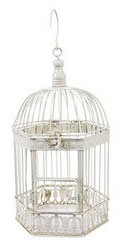 breakfast at tiffany's birdcage