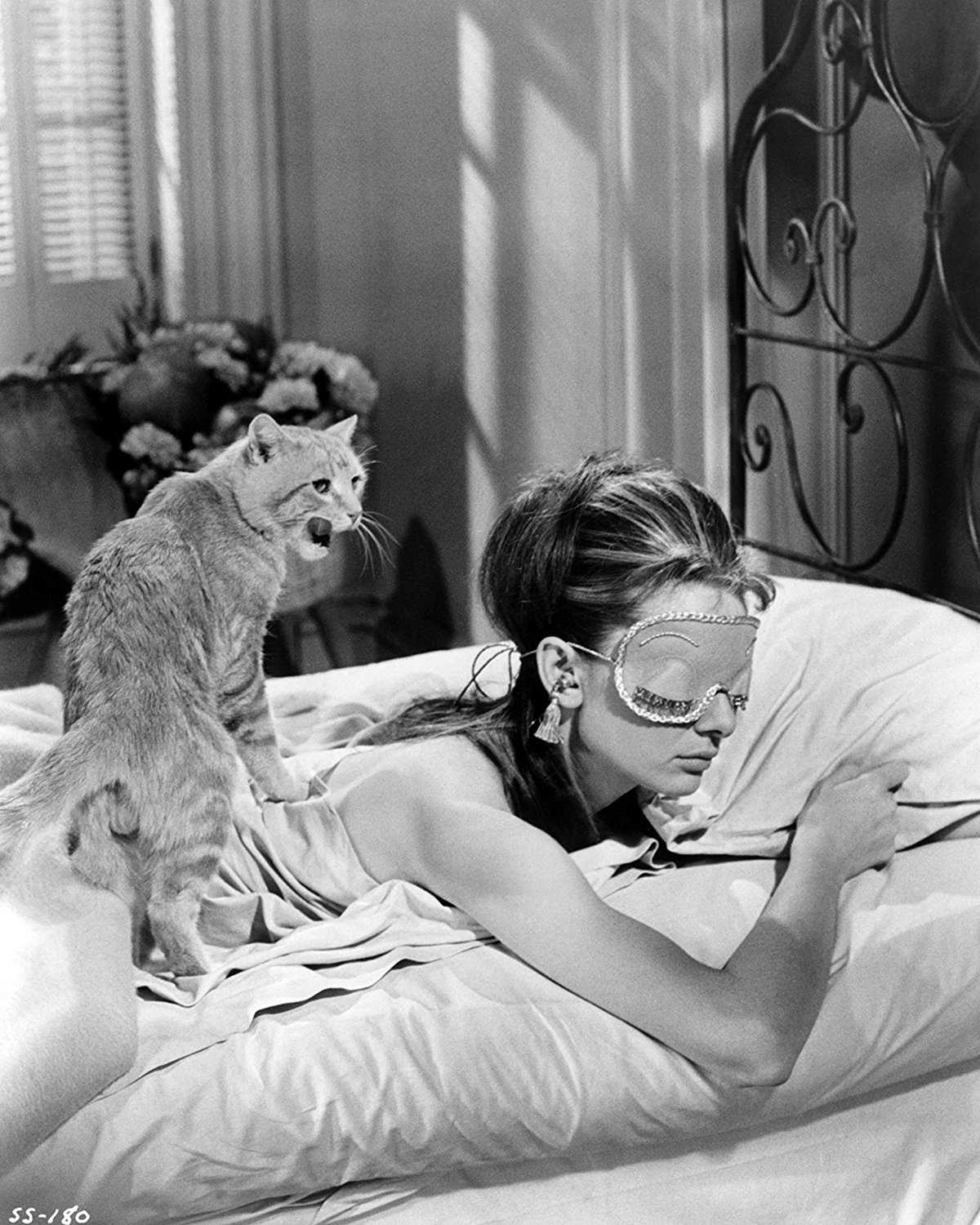 Breakfast at TIffanys Poster Waking up Cat