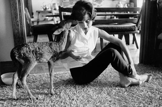animal trainer on the set suggested that she take her on-screen sidekick, a baby deer, home with her so that he would learn to follow her. And they were never apart again.