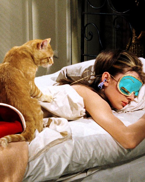 audrey hepburn-orangey cat-breakfast at -tiffanys