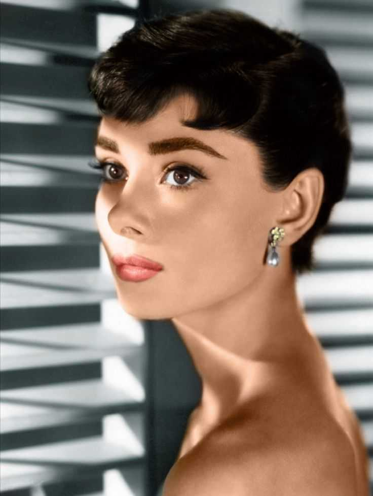 Audrey Hepburn Eyebrows - Sabrina